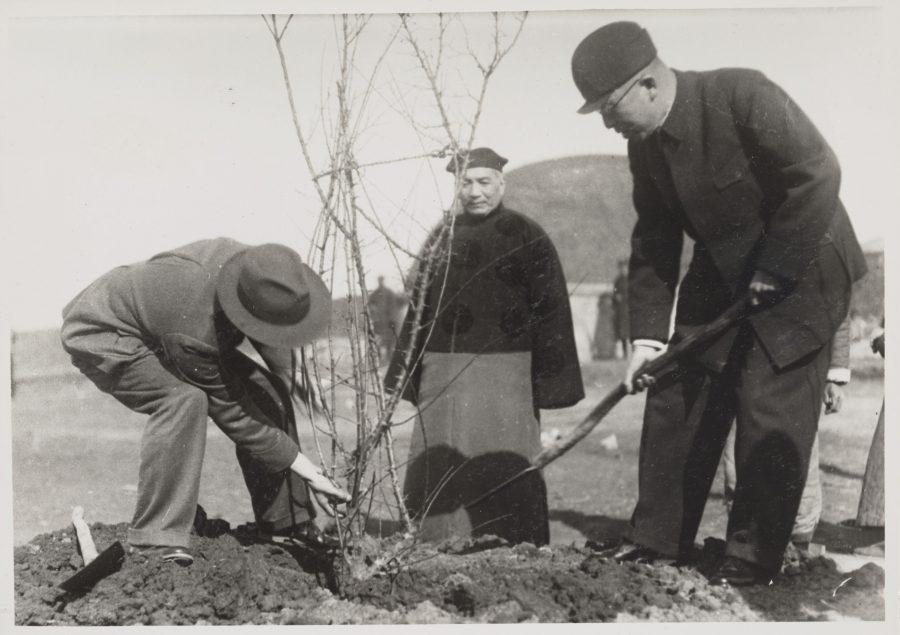 褚民誼監督汪精衛墓前的梅樹種植工作,1944年11月。